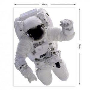 Educational Astronaut Wall Stickers-764