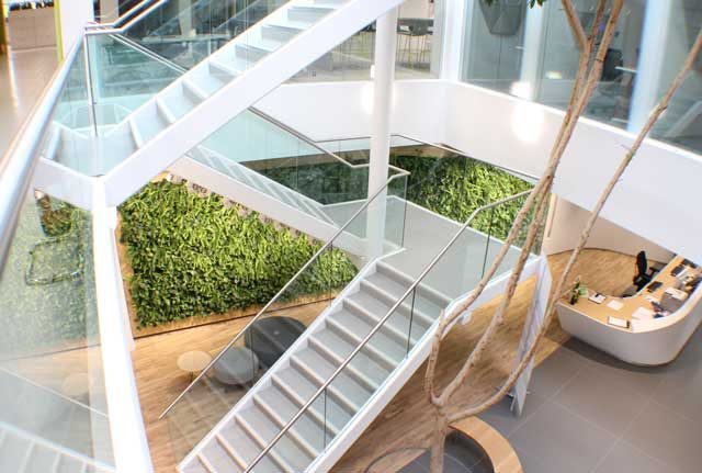 Living green wall stairwell