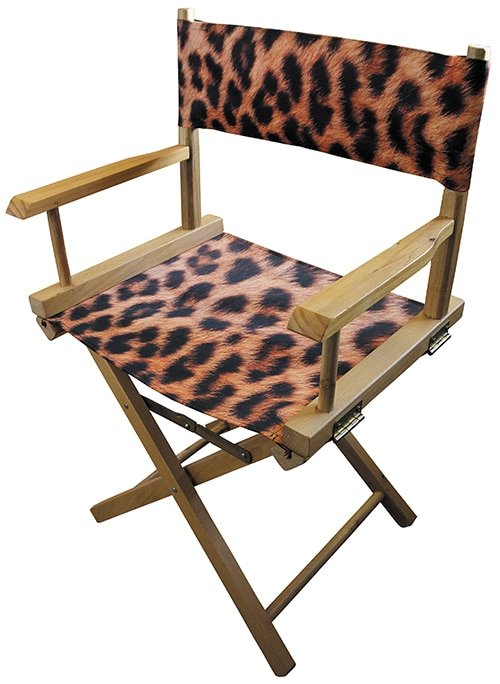 Hollywood Directors Chair