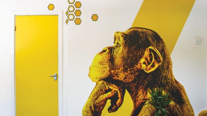 Thinking Ape Wall Graphic and Door Wrap