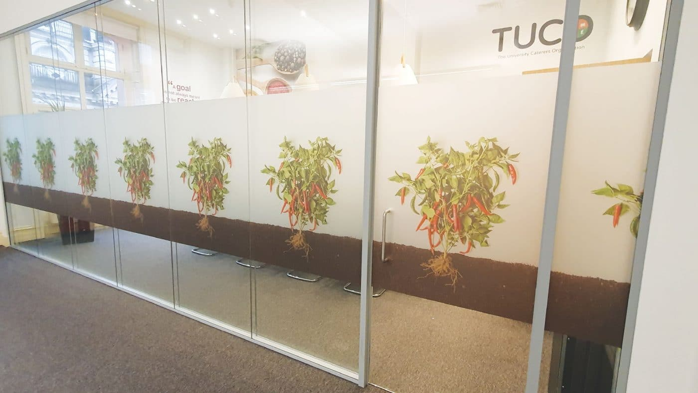 Printed Etch Graphics on Glazing at TUCO
